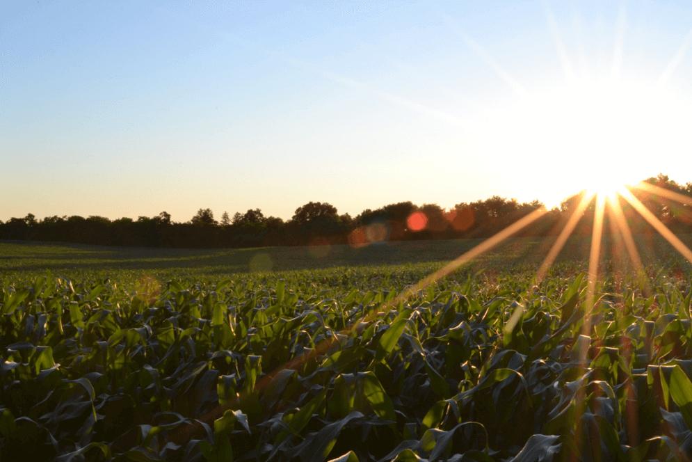 Technische innovatie in de landbouw