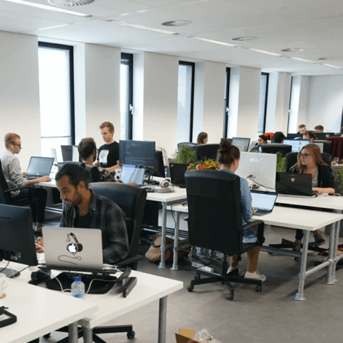 App developers working Rotterdam